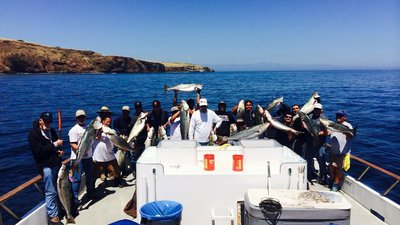 Seabass On Live Squid!  Book Your Trip Today!
